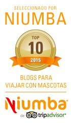 Top 10 Blogs para Viajar con Mascotas